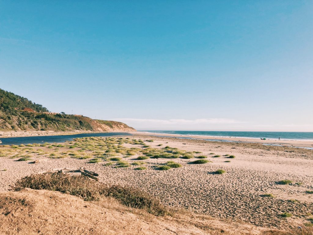 Waddell Creek Beach