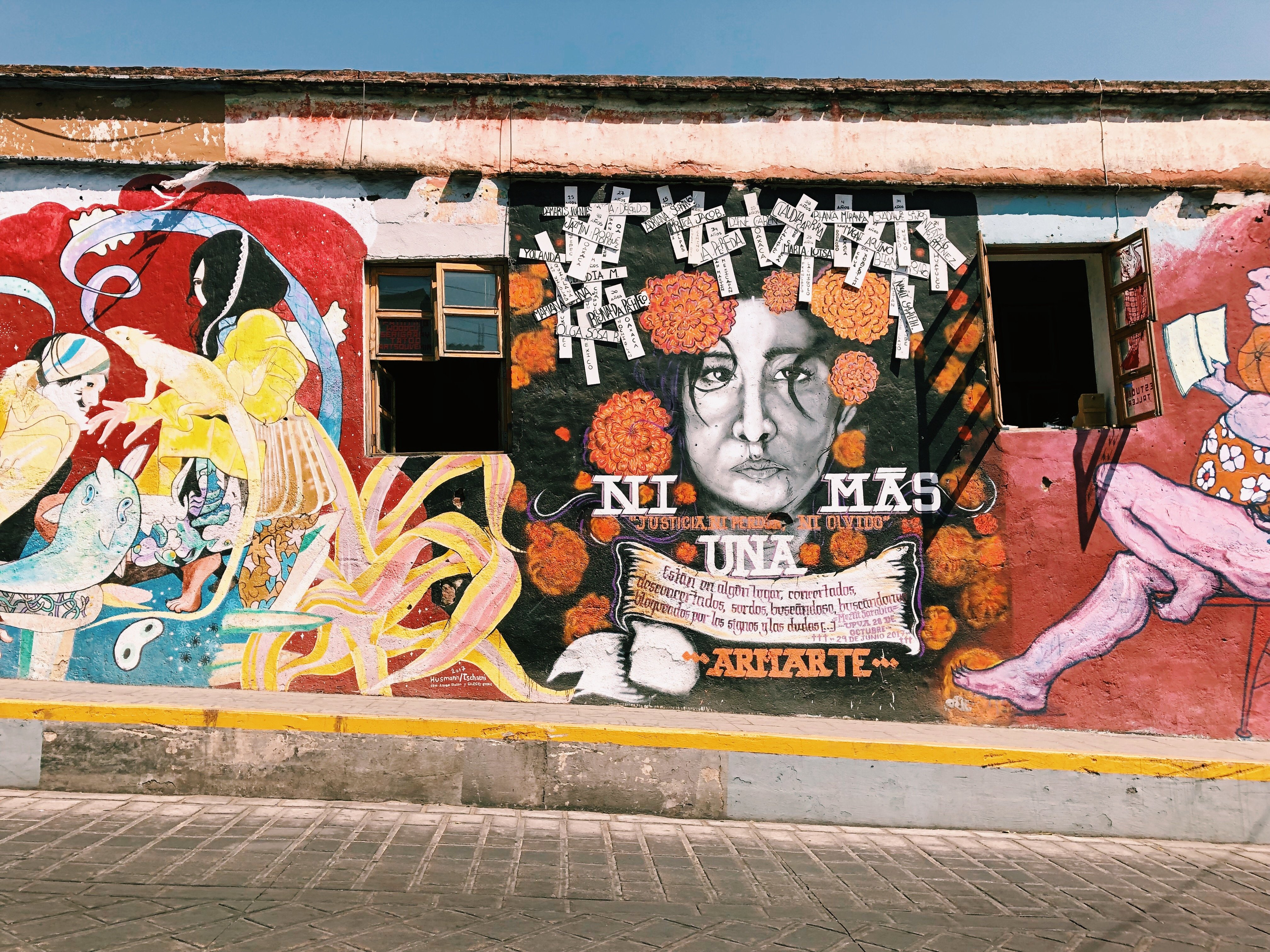 Oaxaca City Street Art