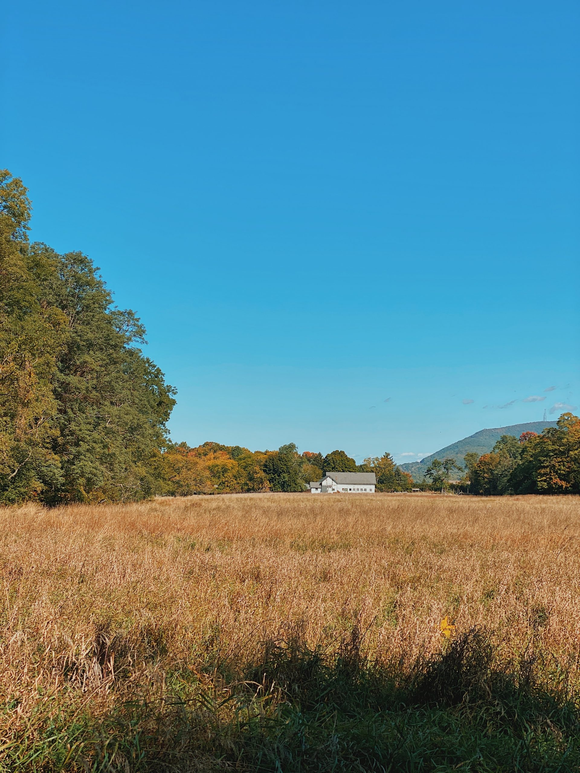 storm king state park